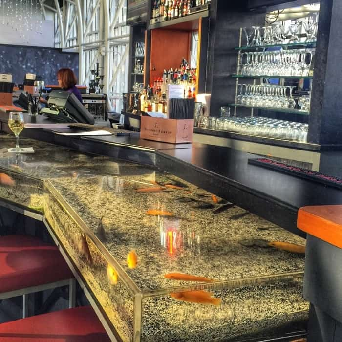 Aquarium Bar at the Galt House