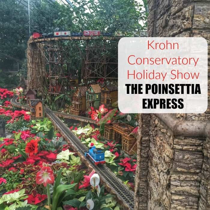 Krohn Conservatory Holiday Show THE POINSETTIA EXPRESS