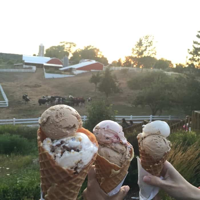MOOmers ice cream
