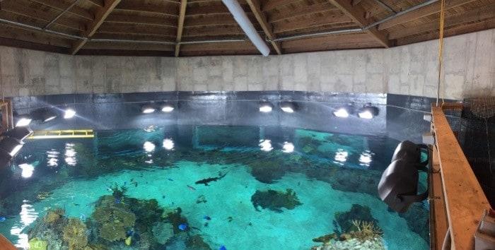 Toledo Zoo