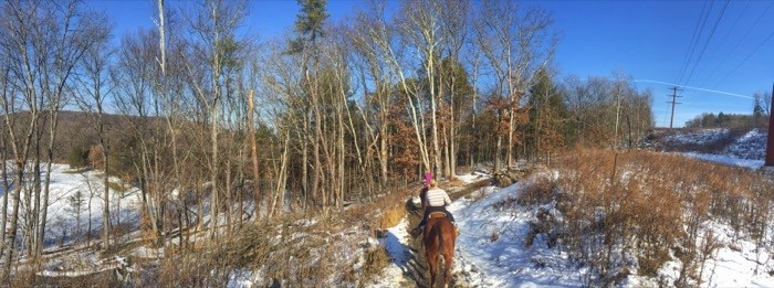 panoramic horseback riding