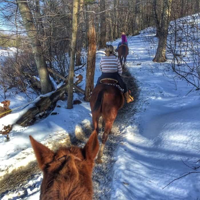 trail riding Fernwood Resort