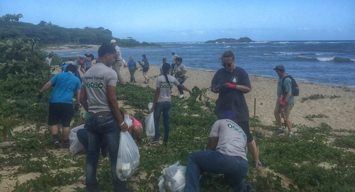 Reforestion with Fathom Travel 14