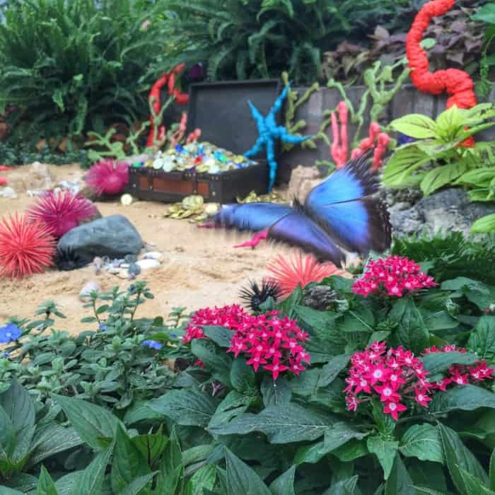 Why this year's butterfly theme at the Krohn might be my favorite