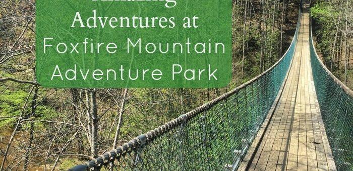 Amazing Adventures at Foxfire Mountain Adventure Park