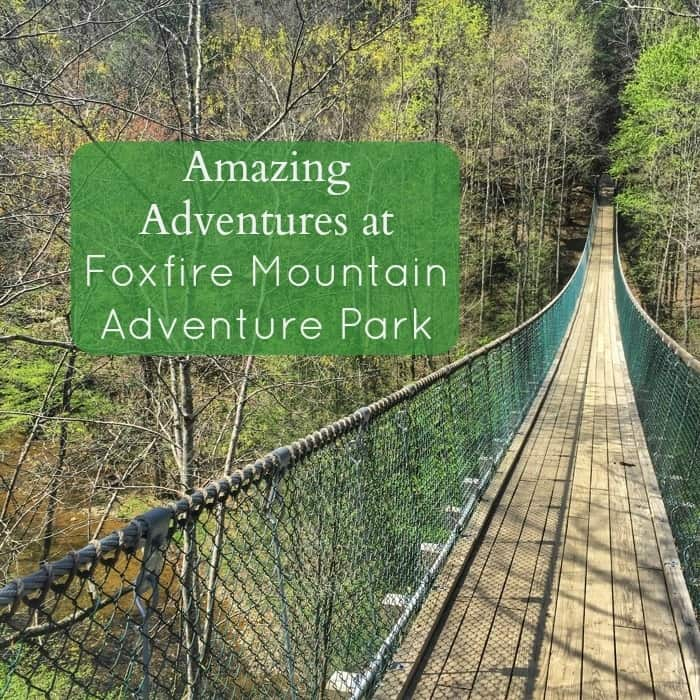 Amazing Adventures at Foxfire Mountain Adventure Park