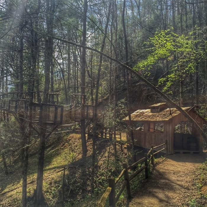 Foxfire Mountain Adventure Park 23