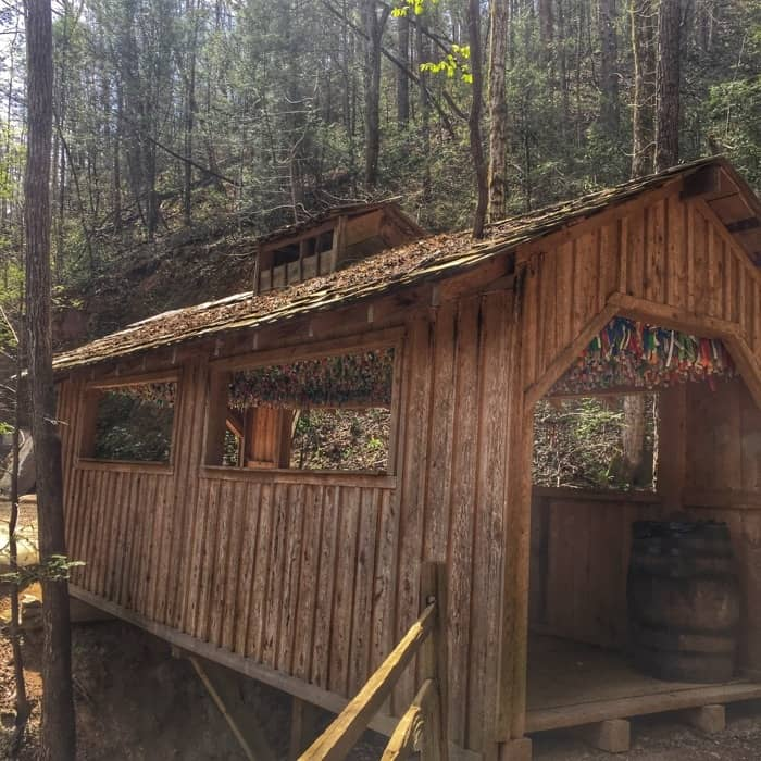 Foxfire Mountain Adventure Park 45
