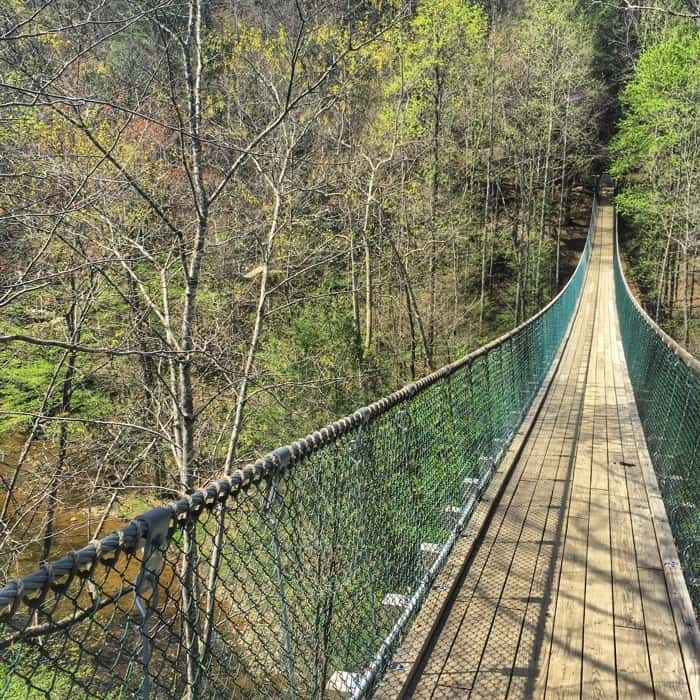 Foxfire Mountain Adventure Park swinging bridge 3