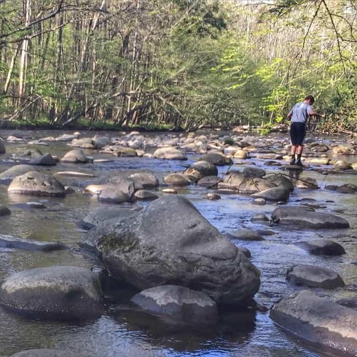 Great Smoky Mountains National Park creek