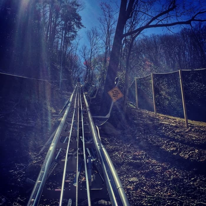 Ski Mountain Coaster
