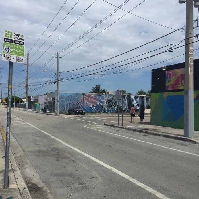 Wynwood Art District 23