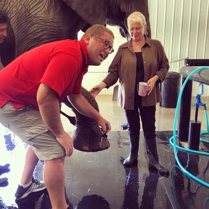 Elephant Retreat at Wilstem Ranch 29