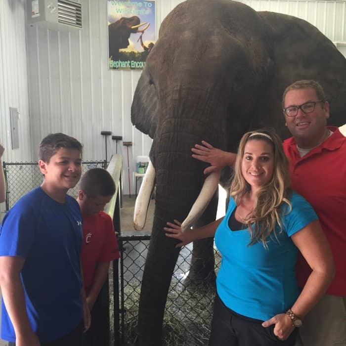 Elephant Retreat at Wilstem Ranch 4