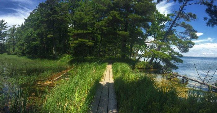 Ludington State Park 10
