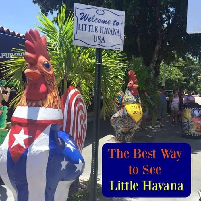 The Best Way to See Little Havana