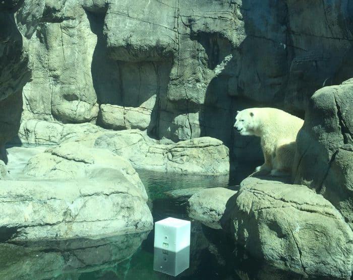 Indianapolis Zoo 15