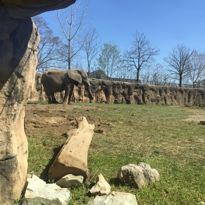 Indianapolis Zoo 9