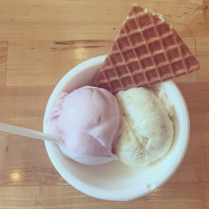 jenis-splendid-ice-cream