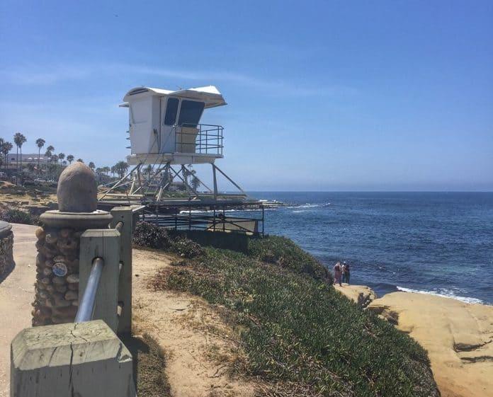La Jolla Beach 8