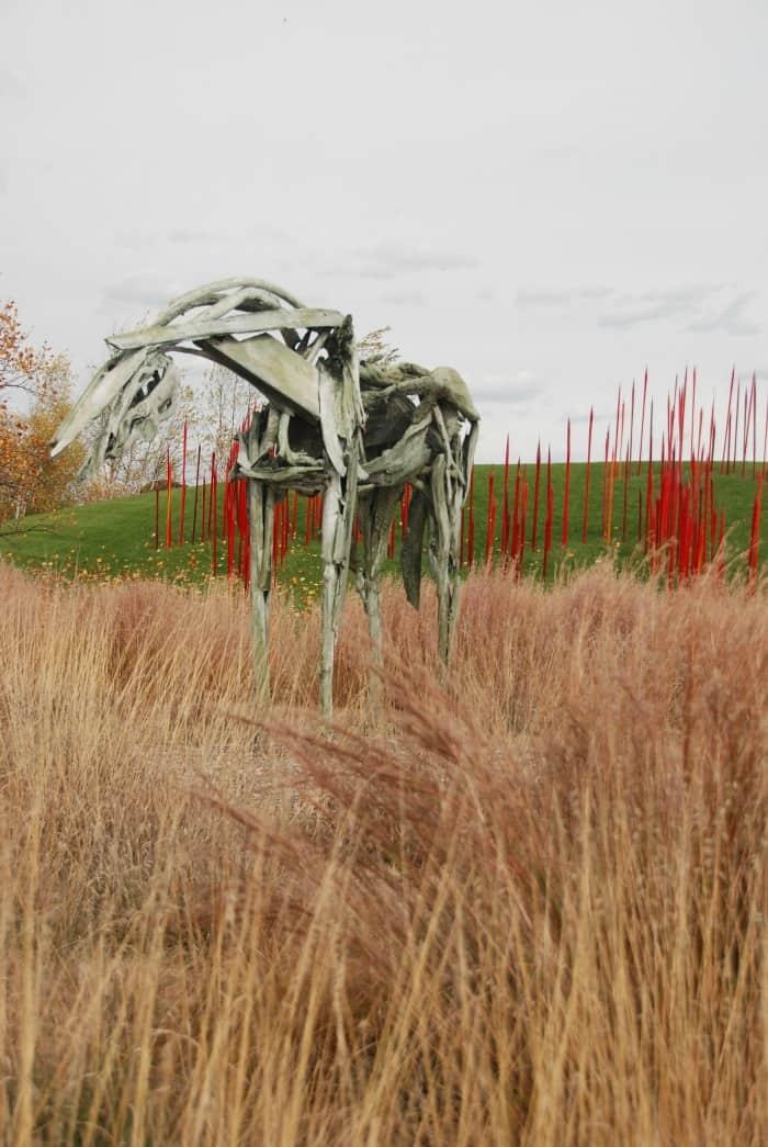Fall Colors in Grand Rapids Michigan