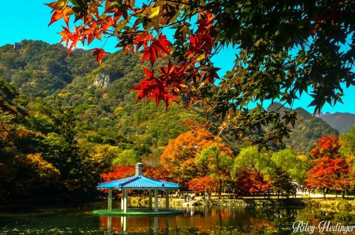 Fall Colors in South Korea