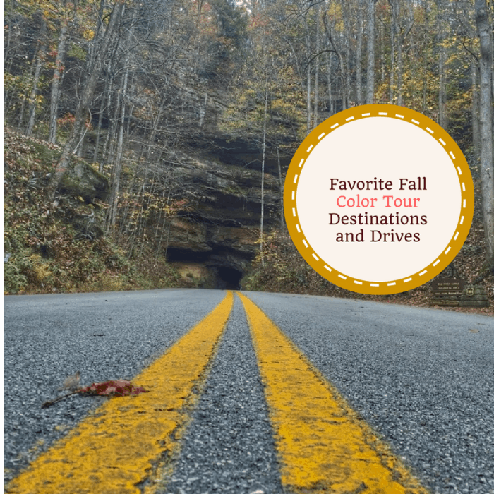 Favorite Fall Color Tour Destinations and Drives