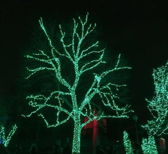 holiday-lights-11