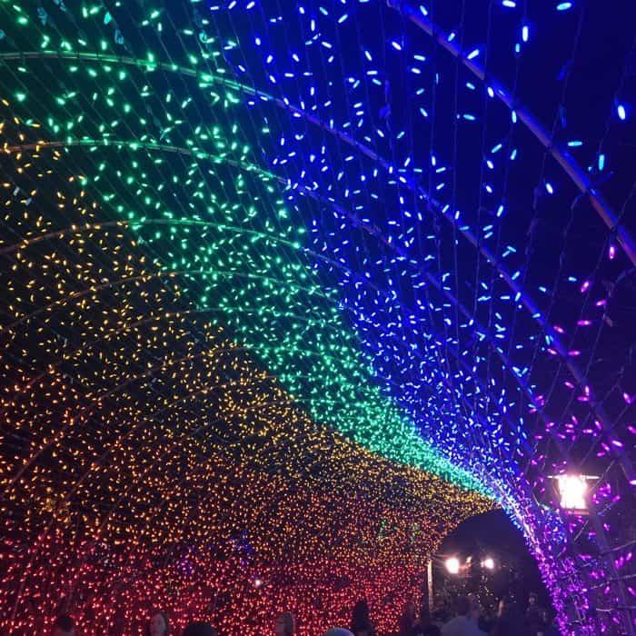 holiday-lights-6