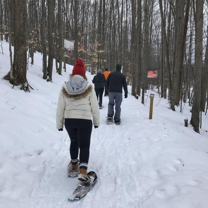 snowshoeing at Michigan Legacy Art Park