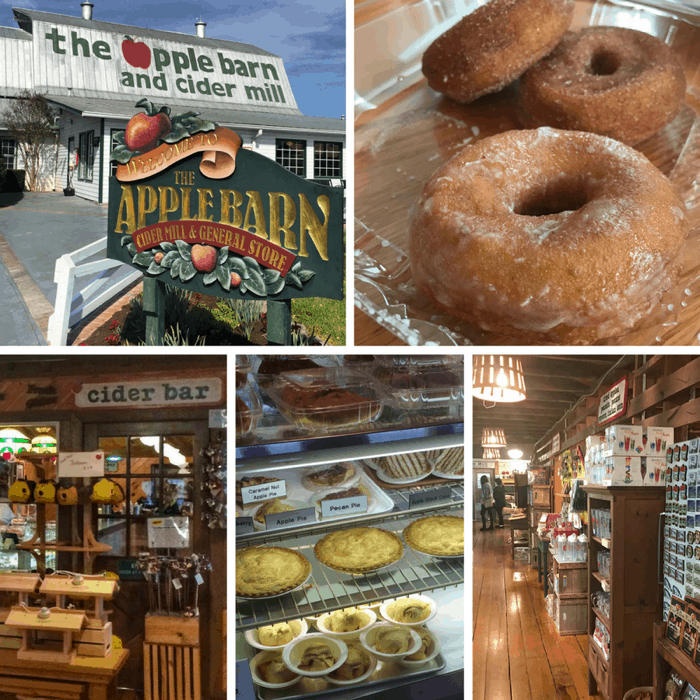 The Apple Barn Cider Mill & General Store Fried Pie & Apple Cider Freeze