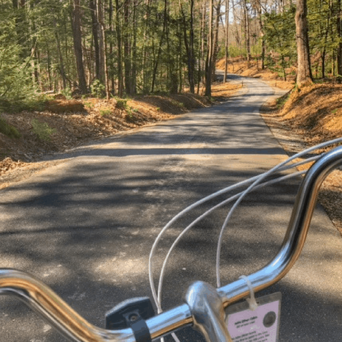 bike view of the Cades Cove loop in TN