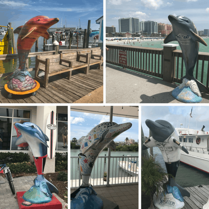 Clearwater Dolphin Trail