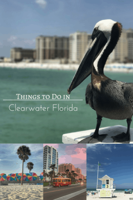 Things To Do in Clearwater, FL