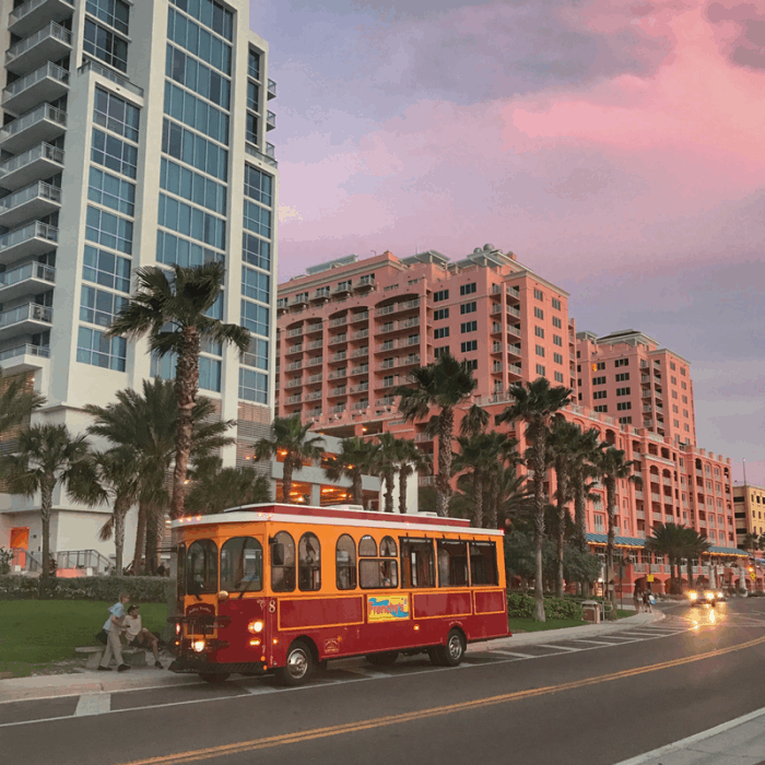 Jolley Trolley in Clearwater, FL