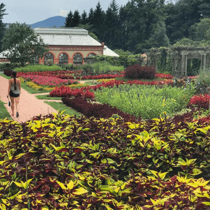 gardens at The Biltmore Estate