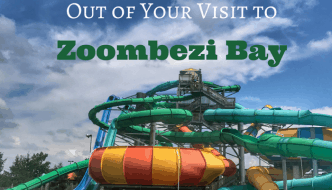 How to Make the Most Out of Your Visit to Zoombezi Bay