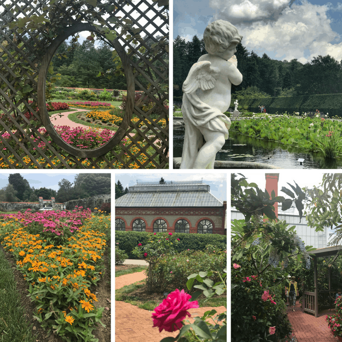 gardens at The Biltmore Estate in Asheville NC