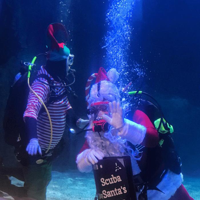 Scuba Santa Newport Aquarium