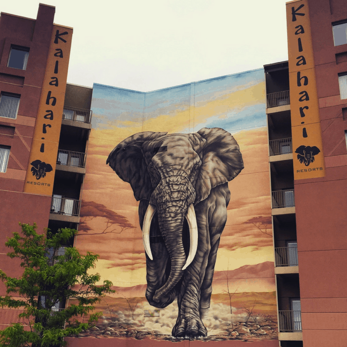 Elephant mural at Kalahari Resort in Sandusky, OH