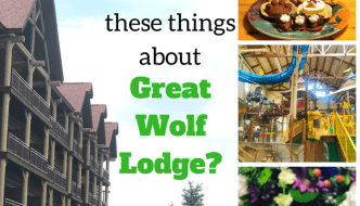 Did You Know These Things About Great Wolf Lodge?
