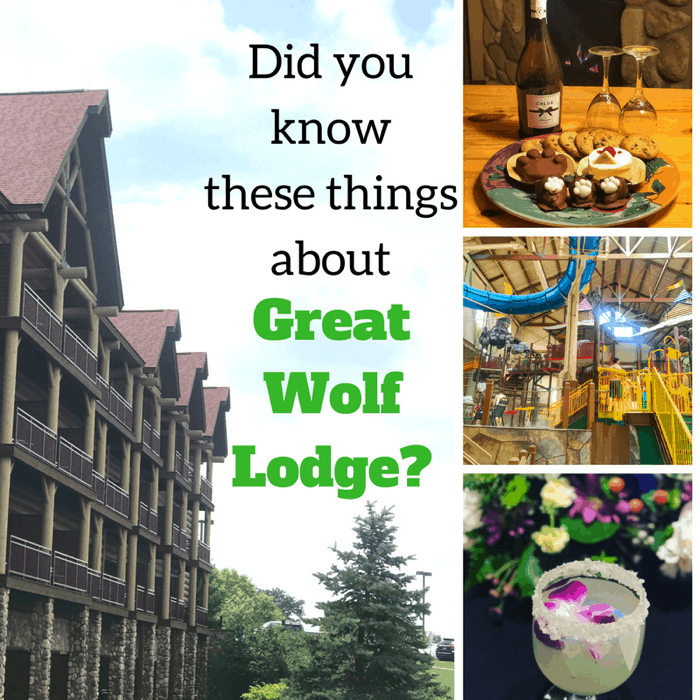 Did You Know These Great Things About Great Wolf Lodge?