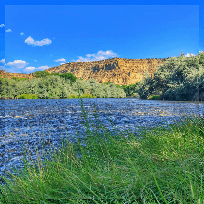 scenic view of San Juan River in New Mexico