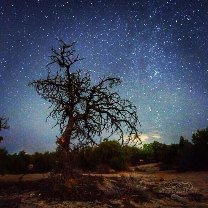 dark sky stargazing in New Mexico