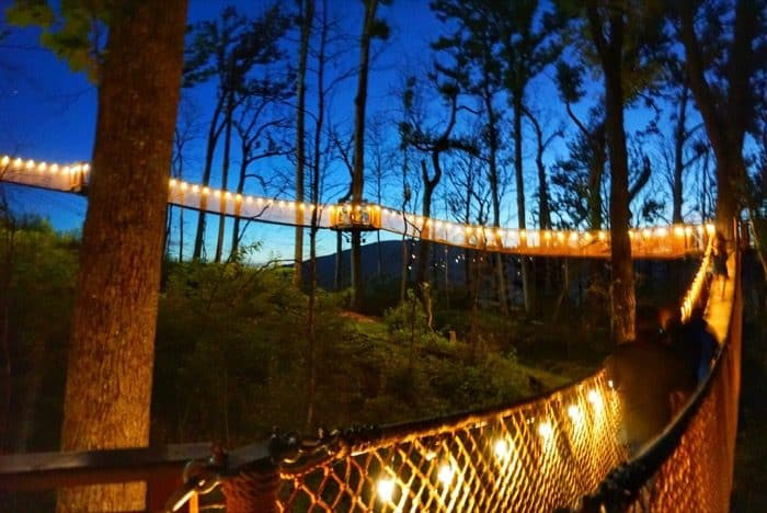 anakeesta-night-canopy-walk-gatlinburg