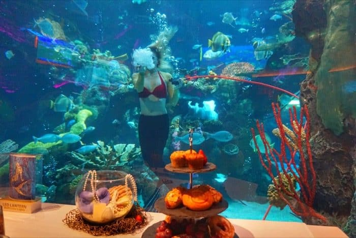 meal-mermaid-silverton-casino-las-vegas-travel