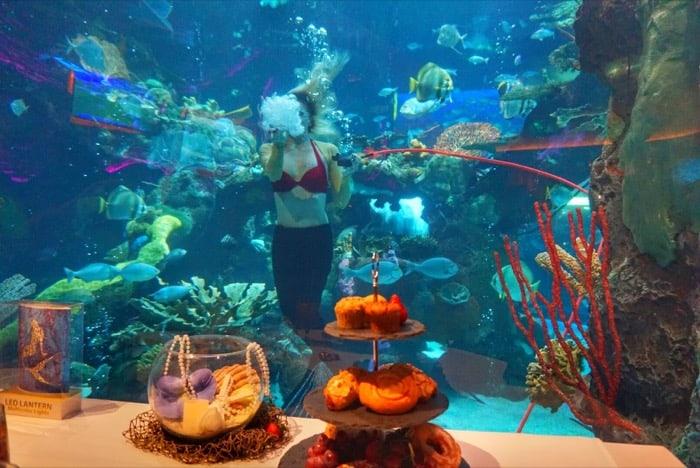 meal-mermaid-silverton-casino-las-vegas-travel