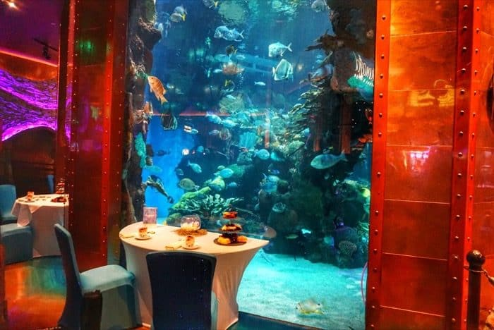 meal-mermaid-silverton-casino-las-vegas-aquarium
