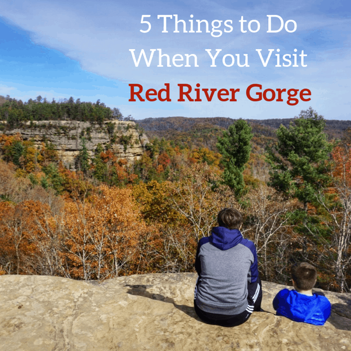 5 Things to Do When You Visit Red River Gorge