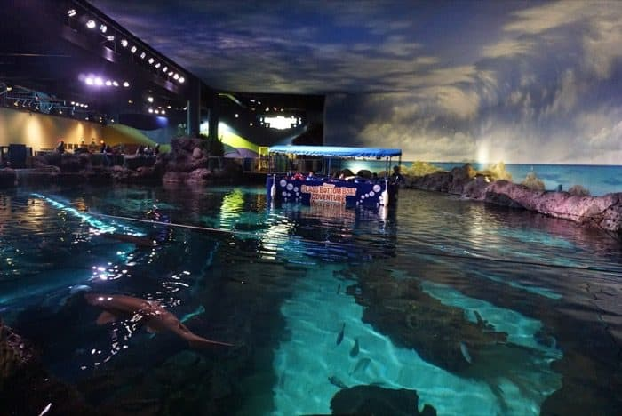 ripleys-aquarium-gatlinburg-adventure-mom-blog